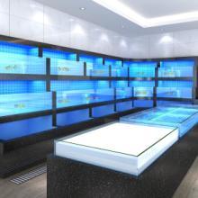 杭州水族供应玻璃海鲜池厂家