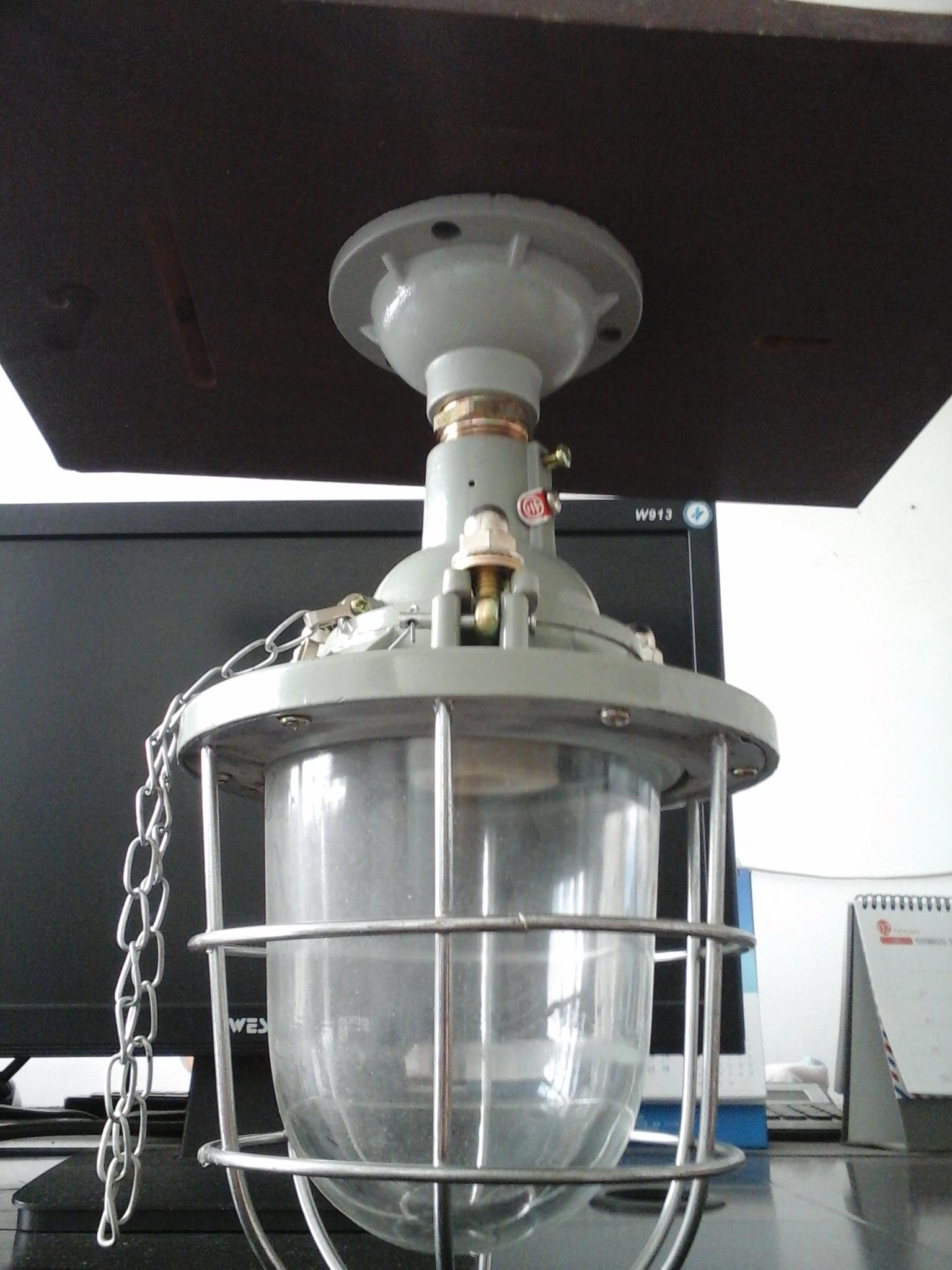 BAD51-100炼油厂防爆灯,20瓦防爆节能灯