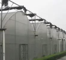 阳光板温室 农业种植栽培连栋式钢结构骨架日光温室大棚定制安装 阳光板温室建设批发