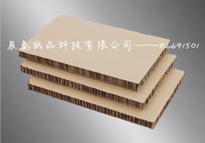 辰泰厂家特价供应加强加硬蜂窝纸板 批发 直销  定制