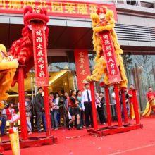 广西舞狮表演 开业醒狮队专项服务