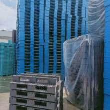 深圳二手塑料卡板 二手塑料卡板厂家直销  二手塑料卡板销售回收报价电话 塑料栈板回收 二手塑料卡板