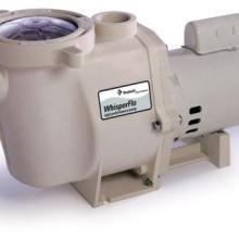 滨特尔水泵供应、报价、厂家图片