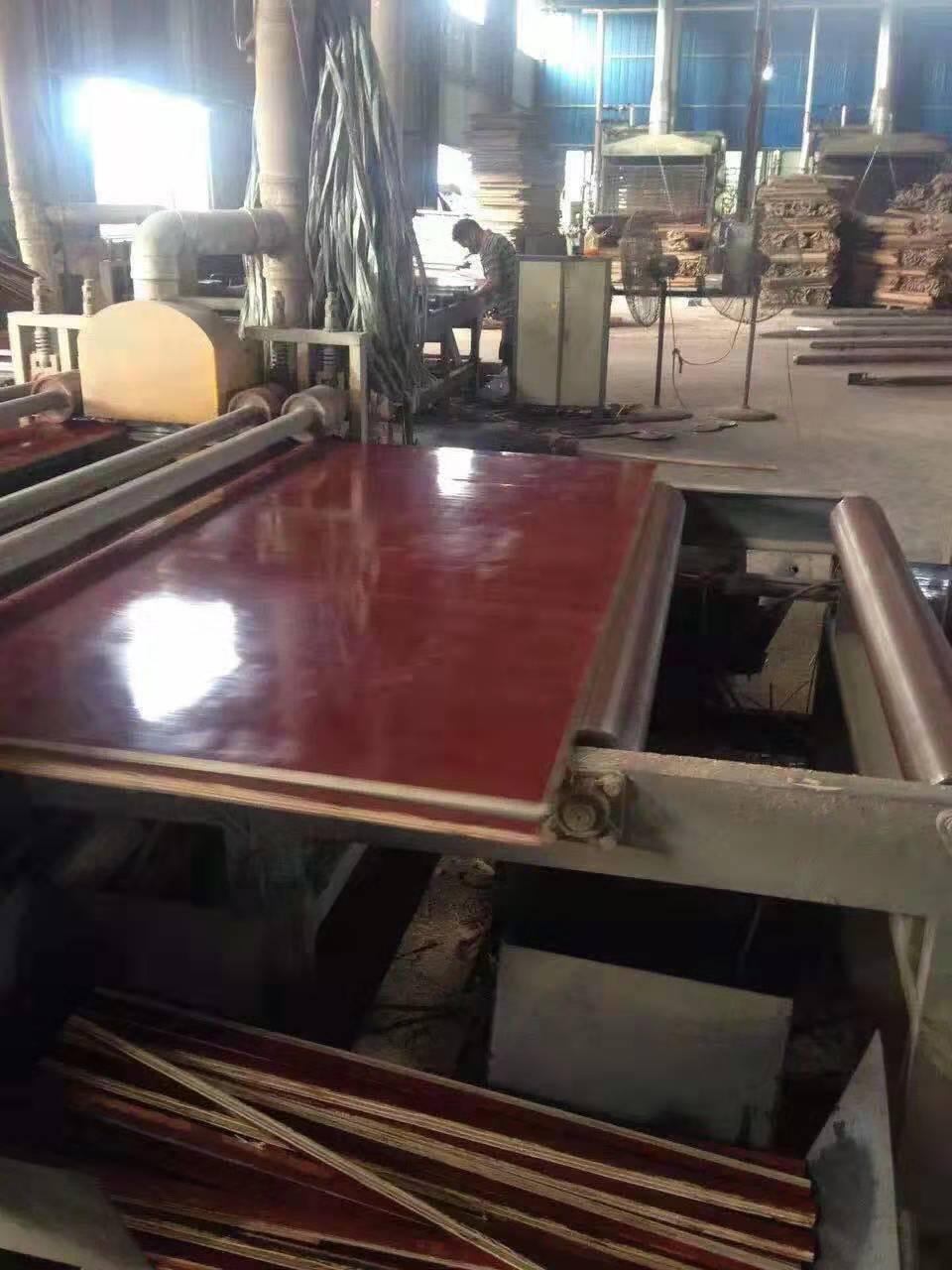 钦州市建筑工程塑料模板价格 建筑工程塑料模板批发 塑料模板厂家