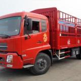 深圳到香港淘宝集运 直达专线 货物运输   五金普货运输服务  中港物流公司电话