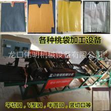 供应山东伟明厂家ZDJ型全自动制作柠檬果套机械图片