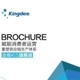 供应南通金蝶旗舰版软件,中小型企业ERP,云平台新零售解决方案