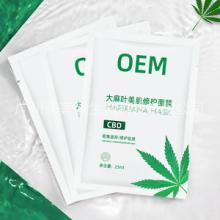 大,麻葉 大,麻葉面膜大麻二酚CBD加工圖片